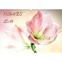 Flowers / 2019 (Wandkalender 2019 DIN A3 quer): Blumenkalender mit 12 Blumen Motiven (Monatskalender, 14 Seiten ) (CALVENDO Natur)