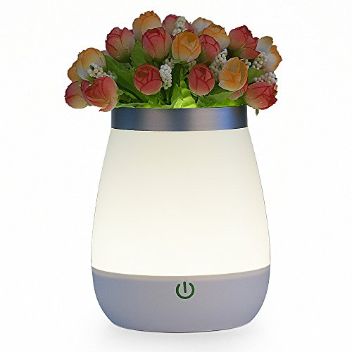 Veesee Luce di Notte Vaso Lampade Dimmerabili Portatile Sensore Tattile Ricaricabile con Ricarica USB, 2800-3000K (Fiore Scatola Del Movimento)