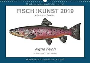 Fisch als Kunst 2019: Atlantische Forellen (Wandkalender 2019 DIN A3 quer): Mit 13 wissenschaftlichen Farbillustrationen (Monatskalender, 14 Seiten ) (CALVENDO Tiere)