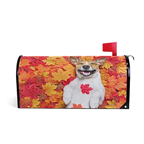 Jack Post Möbel (Wamika Jack Russell Dog Autumn Leaves Welcome Magnetbriefkasten-Abdeckung, Standardgröße, Makover Mailwrap Garten Home Decor)