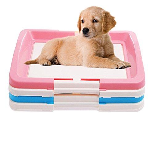 Welpentoilette Hunde WC Hundetoilette Hundeklo Puppy Trainer (L, BP103-P)