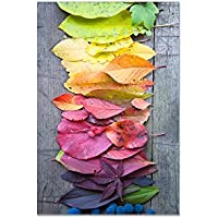 deinebilder24 Kunstdruck mit Rahmen - 90 x 70 cm - Regenbogenlaub, Bunter Herbst