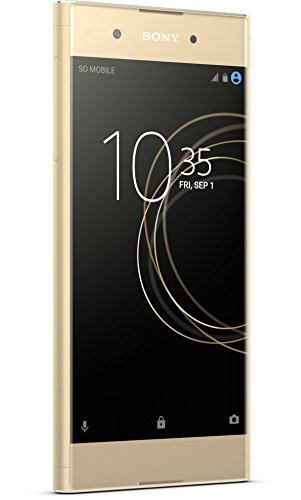 Sony Xperia XA1 Plus Smartphone (14 cm [5,5 Zoll] Display, 32 GB Speicher, Android 7.0) gold