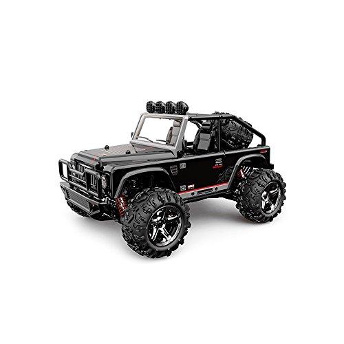 Vatos RC Auto, im Maßstab 1:22, 4WD, mit hoher Geschwindigkeit auf 40 km / h, 2,4-GHz-Elektro-Fahrzeug, 50m Reichweite der Fernbedienung (Schwarz)