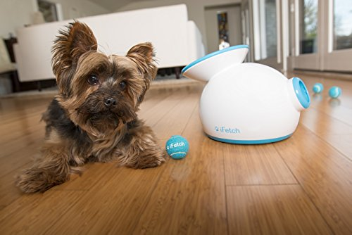 iFetch - Automatic Ball Launcher for your Dog! 2