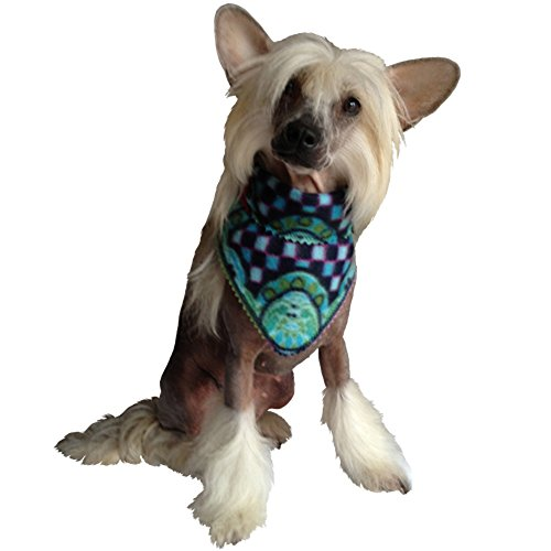 Stylisches Halstuch - für den coolen Hund im Winter (bunt grün)