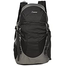fb764957e7 Black and Grey 32 Ltrs Free Size Backpack   Rucksack