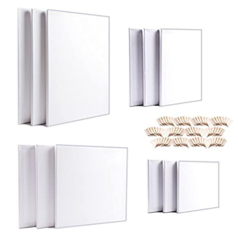 Artdale 12 Pack Standard Edge 17mm Framed Blank Pre Stretched Canvases Triple Primed White 20/30cm Square & 20x30/30x40cm Rectangle Wood Frame 100% Cotton Student/Artists Art Canvas Oil Acrylic & More