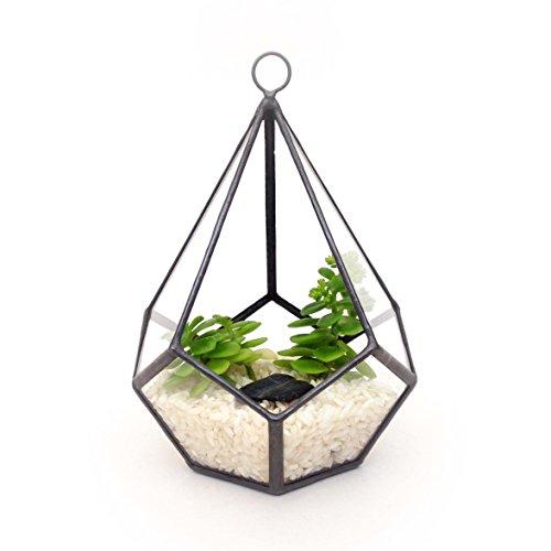 tropfenform-klein-mit-schlaufe-geometrische-glas-terrarium-ubertopf-modern-fur-den-gartenbau-handgef