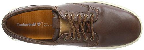 Timberland Leather Oxford, Baskets Basses Homme Marron - Marron foncé