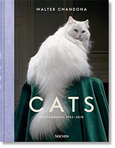 Walter Chandoha. Cats. Photographs 1942-2018 (Fotografia)