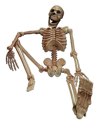 Deko Figur Horror Skelett XL rundum plastisch komplett 1,6 Meter groß Grusel Gerippe Halloween Hänge Schocker
