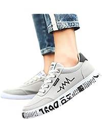 ZHRUI Calzado Deportivo Casual para Hombre, Zapatos de Lona para Hombre al Aire Libre Moda