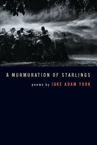 A Murmuration of Starlings (Crab Orchard Series in Poetry-Editor's Selection)