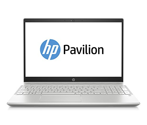 HP Pavilion 15-cs1053ng (15,6 Zoll) Notebook (Intel Core i7-8565U, 16GB RAM, 512GB SSD, NVIDIA GeForce GTX 1050 Ti 4GB, Windows 10 Home) silber
