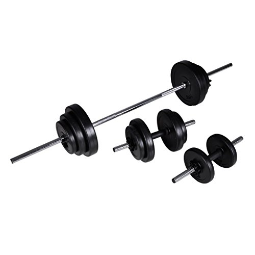 vidaXL 2X Manubrio 30,5kg Palestra Attrezzi Fitness Bilanciere con Dischi Peso