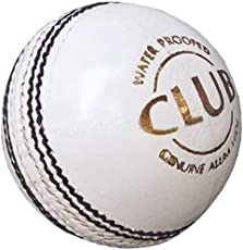 PSE Priya Sports Leather Club Cricket Ball White (2Part)
