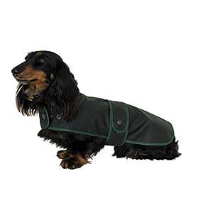 Cosipet-Dachshund-Hunter-Coat