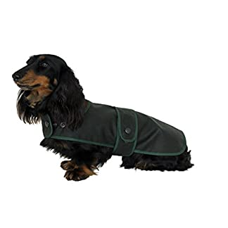 "Cosipet Dachshund Hunter Coat, 11""/28 cm, green 7"