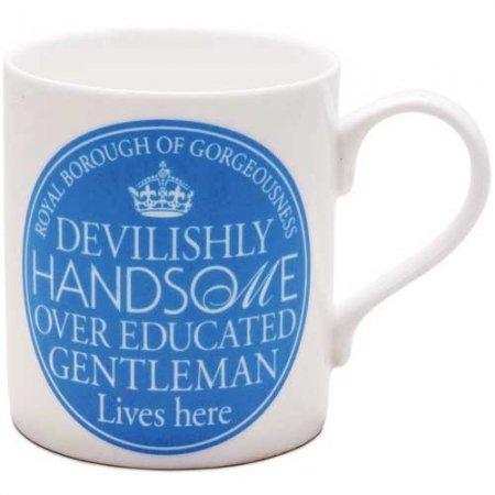 a-devilishly-handsome-over-educated-gentleman-lives-here-large-white-and-blue-fine-bone-china-mug-br