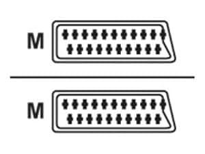 Cables To Go Câble péritel rond 10 m