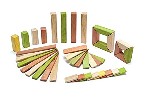 Tegu Explorer Magnetic Wooden Block Set (Jungle, 40-Piece)