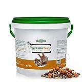 Comida para Ardillas (1Kg) | Producto 100% Natural con Escaramujos y Avellanas | AniForte