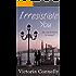 Irresistible You (It's Magic Book 3)