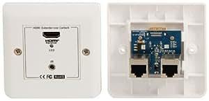 Plaque murale pour prise HDMI sur câble de réseau combiné