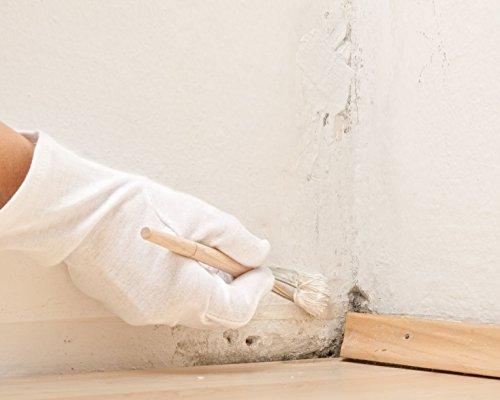 Anti Schimmel Farbe Weiss HOCHDECKEND Schimmelfarbe | BEKATEQ LS-488 Schimmelschutzfarbe GERUCHSARM, VERGILBUNGSFREI, ATMUNGSAKTIV | Schutz vor Schimmel in der Wohnung, Algen und Moos in Bad, Küche, Krankenhäuser, Lebensmittelindustrie wie Metzgerei, Bäckerei uvm. | Schimmelsanierung Antischimmelfarbe (5L)
