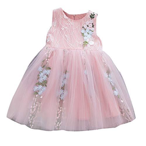 1Set Kleinkind Kinder Kleider Suit Baby Mädchen Tüll Kleid Outfits Kleidung Druck T-Shirt Tops + Floral Rock Partykleid Trikot Tanzkleider Ballettkeider ABsoar (70cm / 3-6 Monate, Rosa B)
