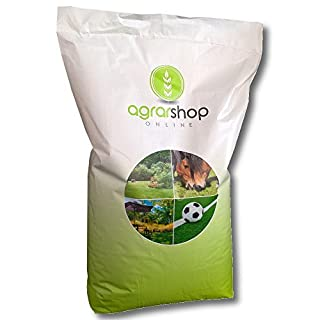 Lawn Universal Lawn Seeds Grass Seeds, 10 kg