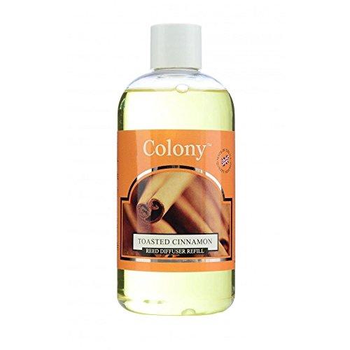 Colony-Recharge pour diffuseur de Parfum avec bâtonnets-Cannelle