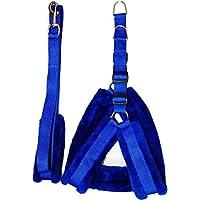 Belim's Nylon Dog Harness & Leash Set with Fur 0.75 Inch Small Blue