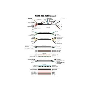 Kabelbaum für MZ TS 125, 150, ETS 125, 150 Standard