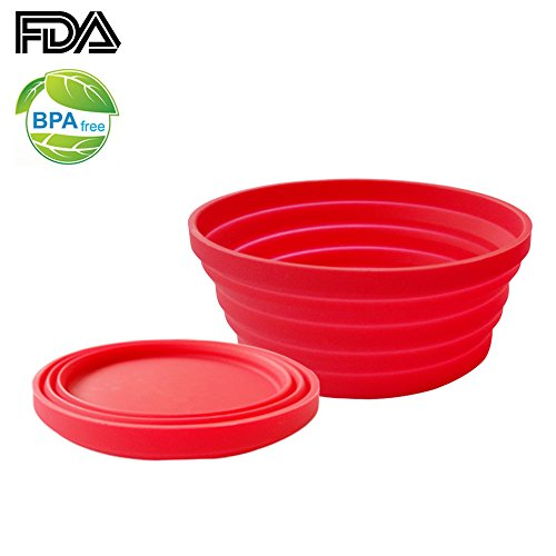 Ecoart Silicone Collapsible Bowl for Outdoor Camping and Hiking Unbreakable and Space Saving 1 Pack