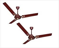 ACTIVA APSRA DECO BROWN 48 INCHES 5 STAR***** CEILING FANS - PACK OF TWO