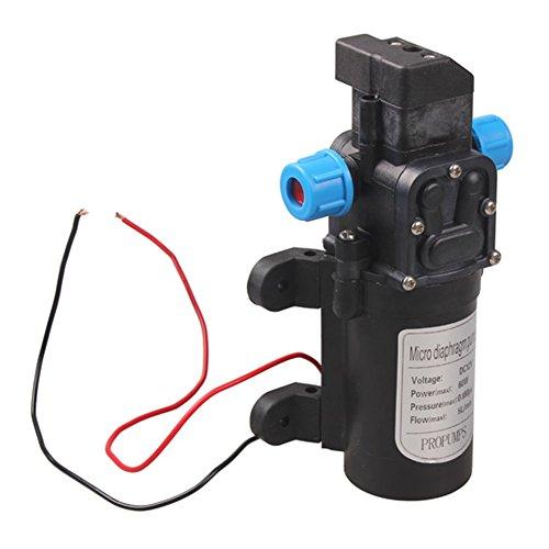 Powlance Mikro-Membran-Wasserpumpe, DC 12 V, 60 W, automatischer Schalter, 5 l/min