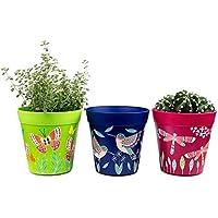Macetas, juego de 3 macetas coloridas, verdes azules y rosadas, de hierbas para interior/exterior.