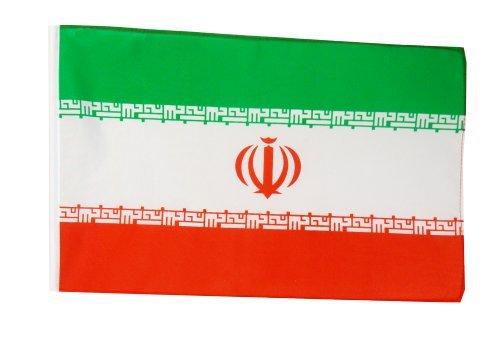 Digni® drapeau Iran 30 x 45 cm