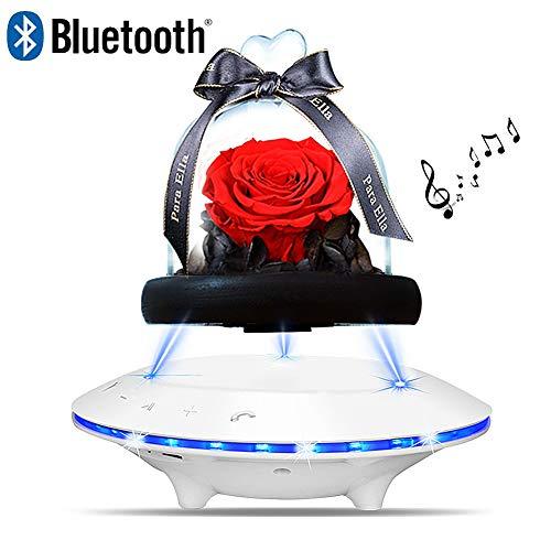 LIRONG Eternal Rose Speaker Kabelloser Bluetooth-Lautsprecher Subwoofer-Steckkarte Audiokabel Laterne,White - Fernbedienung Laterne