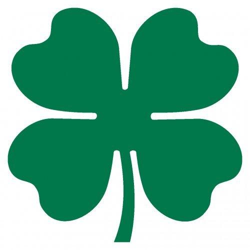 Kleeblatt Glücksbringer Wandtattoo in 5 Größen und 25 Farben (50x50cm grün)