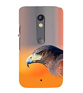 99Sublimation Lovely eagle 3D Hard Polycarbonate Back Case Cover for Motorola Moto X Force :: Dual SIM