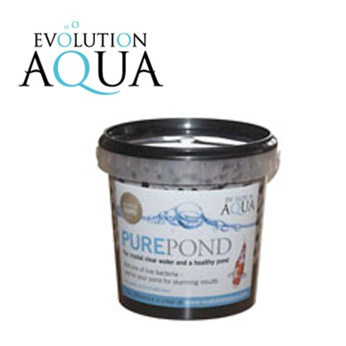 evolution-aqua-pure-pond