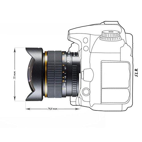 Walimex Pro AE Fish-Eye-Obiettivo 8 mm 3,5 per fotocamere digitali Nikon (Chip per trasferimento dati EXIF), colore: Nero