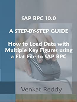SAP BPC 10.0    A STEP-BY-STEP GUIDE:    How to Load Data with Multiple Key Figures using a Flat File to SAP BPC by [Reddy, Venkat]