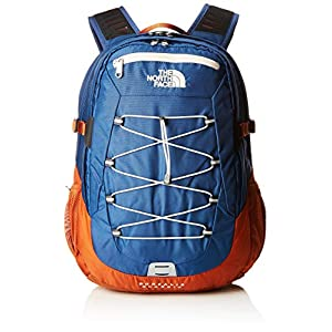 41hjUZpP5EL. SS300  - THE NORTH FACE Borealis Classic Backpack