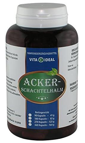 Ackerschachtelhalm 360 Kapseln (Schachtelhalm, Zinnkraut) je 250mg rein natürliches Pulver, ohne Zusatzstoffe im Big Pott, (Mangan 250 Tabletten)