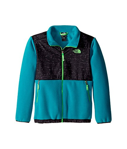 The North Face Boy's Denali Jacket Recycled Enamel Blue Large -