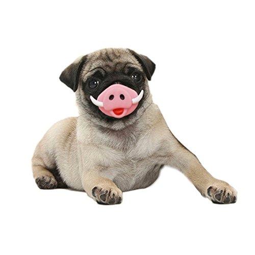 r Pet Spielzeug Schwein Nase Pet Sound Produktion Spielzeug Halloween Spielzeug, geeignet für mittlere und große Hunde Nett und praktisch ( SKU : Bq000058a ) (Kunststoff-halloween-taschen)